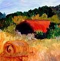 Hayrolls by Gail Kirtz