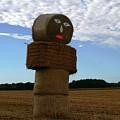 Haystack Man by Veron Miller