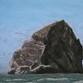 Haystack Rock  by Carl Capps