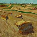 Haystacks In Moravia by Vitali Komarov