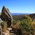 Hazel Mountain Overlook On Skyline Drive In Shenandoah National Park by Louise Heusinkveld