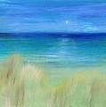 Hazy Beach by Regina Valluzzi