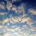 Head In The Clouds- Art By Linda Woods by Linda Woods