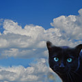 Head In The Clouds by Ludmila SHUMILOVA