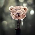 Head Of A Teddy by Joana Kruse