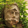 Head With Vines by Michael Henderson