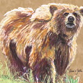 Healthy Brown Bear by Gloria Smith