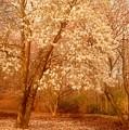 Hear The Silence - Holmdel Park by Angie Tirado