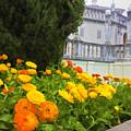 Hearst Gardens by Patricia Stalter