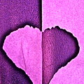 Heart 2 by Nola Starr