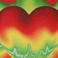 Heart Beat by Rob Hans