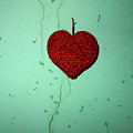 Heart by Bernard Jaubert