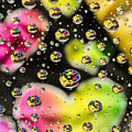 Heart Bubbles by Donna Collins