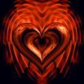 Heart In Flames by Dana Furi