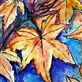 Heart Of Fall by Robin Monroe