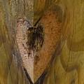 Heart Of The Wood by Tamara Kulish
