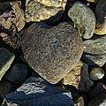 Heart Shaped Stone Loch Fyne  by Gary Eason