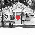 Heart by Terry Cross