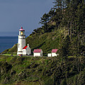 Heceta Head Lighthouse by Teri Virbickis