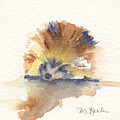 Hedgehog by Marsha Karle