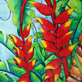 Heliconia Study by Helen Weston