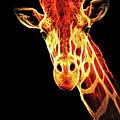 Hello Giraffe by Elaine Walsh