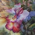 Hello Gorgeous by Tara Moorman