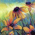 Hello Sunshie by Susan Jenkins