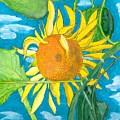 Hello Sunshine by Teresa White
