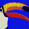 Hello Toucan by Jack Bunds