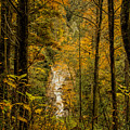 Helton Falls Through The Leaves by Barbara Bowen