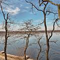 Hempstead Harbor Through The Trees by Bob Slitzan