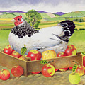 Hen In A Box Of Apples by EB Watts