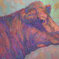 Henry's Red Angus by Susan Williamson