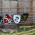 Heraldry Shields At Renfaire by Debra K Gallagher
