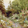 Herbaceous Border  by Evelyn L Engleheart
