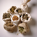 Herbal Teas And Seeds by Stefania Levi