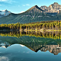 Herbert Lake - Quiet Morning by Jeff R Clow