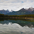 Herbert Lake Reflections  by George Oze