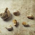 Herbs #033 by Hans Janssen