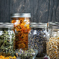 Herbs In Jars by Elena Elisseeva