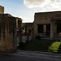 Herculaneum Ruins - Mosaic Tile Streets And Sun Splashes by Georgia Mizuleva