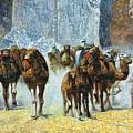 Herd Of Camels by Paul Marie Lenoir