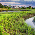 Heritage Shores Nature Preserve by David Smith