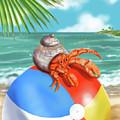 Hermit Crab On A Beachball by Shari Warren