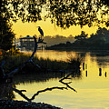 Heron On A Stick Part 2 by Michael Thomas
