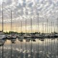Herringbone Sky Patterns With Yachts And Boats  by Georgia Mizuleva
