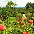 Hershey Garden by Caroline  Urbania Naeem