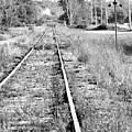 Hespeler Tracks by Traci Cottingham