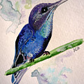 hHUMMINGBIRD 2   by Karin  Dawn Kelshall- Best